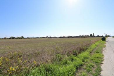 Land Sale - SVORONATA, MUNICIPALITY OF LIVATHOS - SOUTH