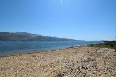 Agricultural Land Plot Sale - AGIOS DIMITRIOS, MUNICIPALITY OF PALIKI - WEST