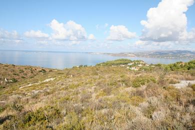 Agricultural Land Plot Sale - LASSI, MUNICIPALITY OF ARGOSTOLI - SOUT