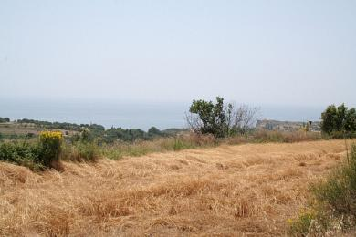 Agricultural Land Plot Sale - METAXATA, MUNICIPALITY OF LIVATHOS - SOUTH