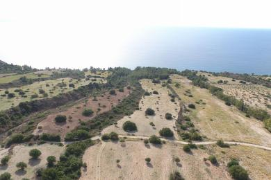 Agricultural Land Plot Sale - SIMOTATA, MUNICIPALITY OF LIVATHOS - SOUTH